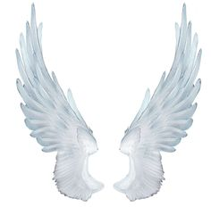 Begin Using These Ideas To Assure An Incredible Experience Angel Wings Png, Angel Wings Drawing, Owl Wings, Angel Warrior, Religious Tattoos, Photo Background Images, New Backgrounds, Wow Art, Animal Ears