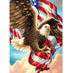 Oil Painting On Canvas, Diy Painting, Painting Steps, Cross Stitch Kits, Cross Stitch Embroidery, American Flag Eagle, Diamond Art, Diamond Cross, Paint By Number Kits