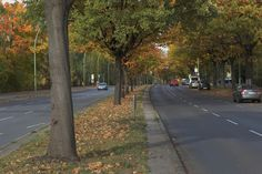 Clayallee, Berlin- I went this way to BAHS.