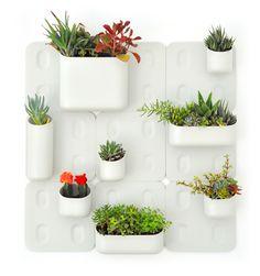 Urbio Indoor Vertical Gardening System. I LOVE modular design! #modular #indoor #planter #design #garden