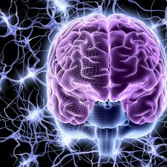 43 Facts That Prove Your Brain Is the Most Powerful Supercomputer on the Planet  EFFICIENCY THAT REALLY MATTERS YOU KNOW HOW TO TAKE GOOD DECISIONS IN LIFE?...NO, YOU REALLY DON'T. http://ipasshortcut.com/cp2/?id=rogermoore&tid=micbrainpowerpint