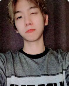 Handsome or cute? Baekhyun Selca, Exo Kokobop, Kpop Exo, Park Chanyeol, Kyungsoo, Taemin, Shinee, Capitol Records, Exo Ot12