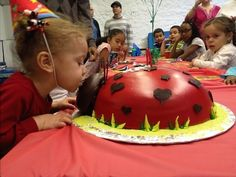 Lady bug cake for 2nd bday.