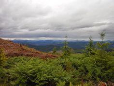 Oregon Home Of Bigfoot? | The Crypto Crew