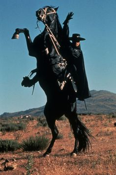 Tornado is the faithful steed of El Zorro the Fox.