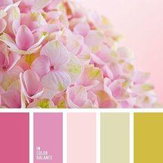 Baby Pink Color Dusty Pink Beige Brown Color