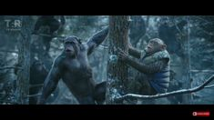 Rocket and Bad Ape  in War for the Planet of the Apes  ❤❤❤  #rocket #badape #warfortheplanetoftheapes #apestogetherstrong