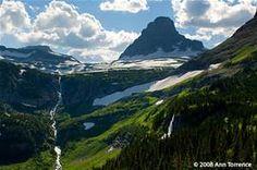 Logan Pass - Bing Images