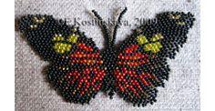 Heliconius Doris Butterfly, Sova Enterprises