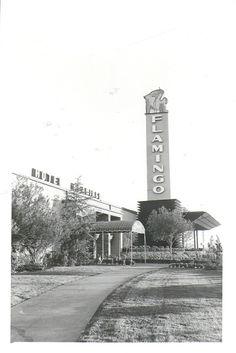 "Facade of the original Las Vegas Flamingo Hotel"" (ca but with its second, modified sign . Flamingo Casino Las Vegas, Flamingo Hotel, Las Vegas City, Vegas Casino, Las Vegas Strip, Las Vegas Nevada, Casino Movie, Old Vegas, Vegas 2"