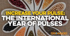 From GMO Inside: Increase Your Pulse: The International Year of Pulses -