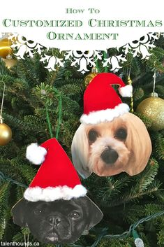 How to make a customized Christmas ornament of your dog Dog Christmas Ornaments, Christmas Puppy, Personalized Christmas Ornaments, Christmas Animals, Christmas Crafts, Custom Ornaments, Pet Christmas Gifts, Handmade Ornaments, Dog Themed Crafts