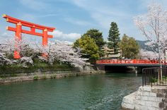 D6 Heian Shrine, Kyoto, Japan  the largest torii (sacred gate) in Japan and lovely gardens.It was built in 1895.