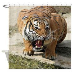 Tiger_2015_0156 Shower Curtain on CafePress.com