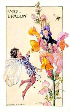 PortForLio - 'Snapdragon Fairy' with bee - Illustration by Margaret W. Tarrant for the book 'Flower Fairies' (Marion St John Webb)' Fairy Dust, Fairy Land, Fairy Tales, Illustrations, Illustration Art, Fairy Pictures, Elves And Fairies, Vintage Fairies, Beautiful Fairies