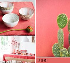 Trend Preview | Pantone's Colour Predictions for Spring/Summer 2014 | Decorenvy
