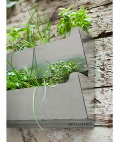 Elegant Indoor Planter By Paula Haynes | Indoor Planters, Indoor Wall  Planters And Indoor Nice Look