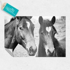 Fototapeta konie na polanie 150x100 cm