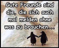 Gute_Freunde_sind_die.jpg