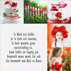 'n Hart vol liefde... Hart, Afrikaans, Christianity, Crochet Hats, Bible, Friends, Knitting Hats, Biblia, Amigos