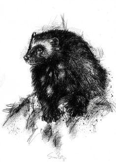 Tribal Bear Tattoo, Bear Claw Tattoo, Bear Tattoos, Body Art Tattoos, All Animals Pictures, Work With Animals, Spirit Animal Tattoo, Animal Tattoos, Animal Sketches