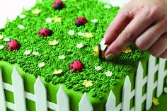 Torten dekorieren, Garten, Torte, Gras, Frühling,