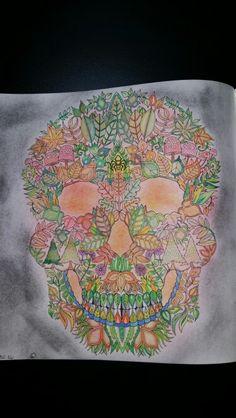 The skull Johanna Basford