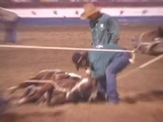 GRAPHIC -- Criminal Horse Abuse at Oklahoma Prison Rodeo.PLEASE PIN IF YOU LOVE ANIMALS,I DON'T DRINK COKE ANYMORE!