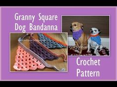 You will love this Crochet Dog Bandana Pattern Ideas and we have included a video tutorial to show you how. Check out all the great ideas now.