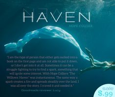 HAVEN, book 1 in The Willows series. YA paranormal romance by Hope Collier.
