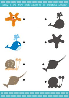 Match the Items - Sea Creatures - KidsPressMagazine.com