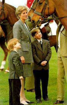 royal families, hors, prince harry, mothers, princessdiana, british, children, prince william, princess diana