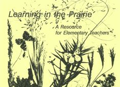 PDF of book of 37 Lesson Plans for elementary/middle school level. Fun and informative activities about all aspects of prairie Kansas Day, Flint Hills, School Levels, Elementary Teacher, Teacher Resources, Lesson Plans, Middle School, Pdf, Science