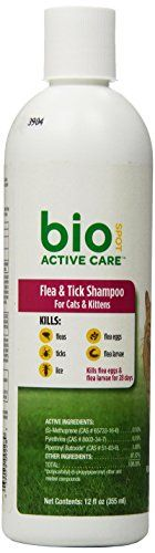 BioSpot Active Care FT Shampoo Cats and Kittens 12 oz -- Details can be found by clicking on the image.(This is an Amazon affiliate link and I receive a commission for the sales)