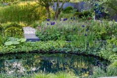 ABF The Soldiers Charity #Garden, Charlotte Row, #Chelsea Flower Show 2014, No Mans Land