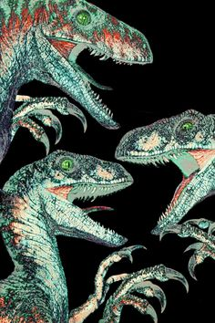 BROTHERTEDD.COM Jurassic Park Dvd, Jurassic Park Raptor, Jurassic Movies, Velociraptor Jurassic Park, The Cheetah Girls, Jurrassic Park, Park Art, Vince Vaughn, Godzilla