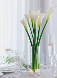 Nathelie and Michael's wedding at Belle Mer All White Wedding, Floral Wedding, Wedding Weekend, Wedding Day, Cylinder Vase, Traditional Wedding Dresses, Calla Lily, Reception Decorations, Real Weddings