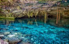 Cenotes y ríos subterráneos de la Península de Yucatán!!
