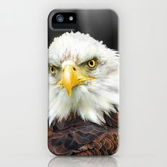 Bald Eagle iPhone Case by F Photography and Digital Art - $35.00