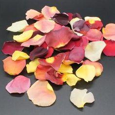 Silk Rose Petals 100 Colors Mix & Match Rose Petals   Etsy Rose Petals Falling, Fake Rose Petals, Dried Rose Petals, Arch Flowers, Flower Garlands, Table Flowers, Paper Flowers, Maple Leaf, Aisle Runner Wedding