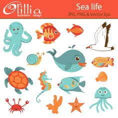 Sea life - This set includes 15 beautiful sea creatures for your craft and creative projects.