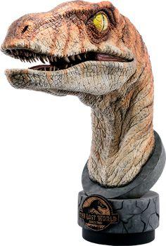 Jurassic Park Male Raptor Life-Size Bust by Chronicle Collec Jurassic World Dinosaur Toys, Dinosaur Art, Jurassic Park Series, Jurassic Park World, Dinosaur Wallpaper, Dinosaur Tattoos, Prehistoric Creatures, Mythical Creatures, T Rex