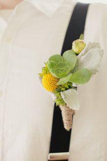 jaune et vert : plante grasse et craspedia