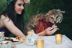 Animal tea party. Bob cat at a dinner party.