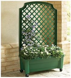 self-watering rolling planter with trellis
