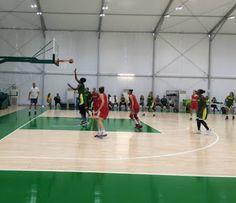 Blog Esportivo do Suíço:  Seleção feminina de basquete perde jogo-treino para a Sérvia