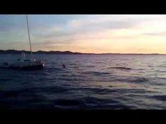 Zadar Beach Apartmanok www.horvatapartman.eu - YouTube