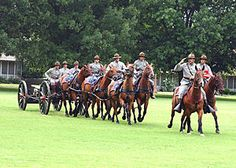 The Field Artillery Half-Section from Fort Sill, Oklahoma is the U.S. Army's last horse-drawn artillery unit.