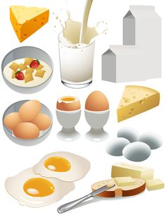 Cheese and dairy products vector material 01 - Lactose Free Diet Nutritious Breakfast, Breakfast Recipes, Starbucks Art, Lactose Free Diet, Food Clipart, Apple Sausage, Food Pyramid, Food Icons, Clip Art
