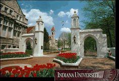 Indiana University Bloomington,IN